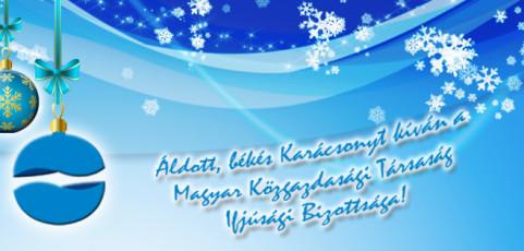 Boldog Karácsonyt kíván az MKT IB!